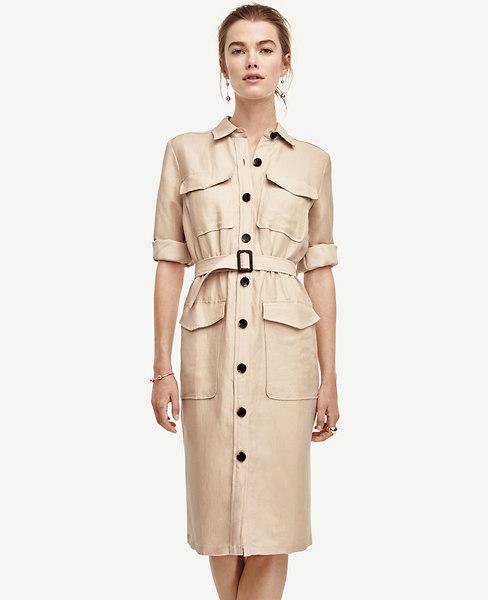 e87d0b9312b5 Safari Trench Dress | Ann Taylor