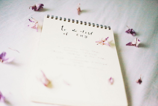 the next episode blogger notebook new years resolution romantic