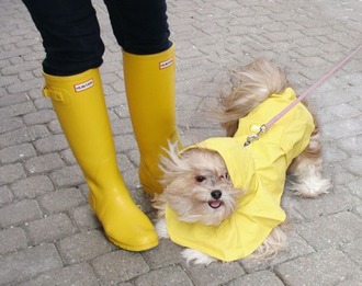yellow wellies animal hunter boots animal clothing