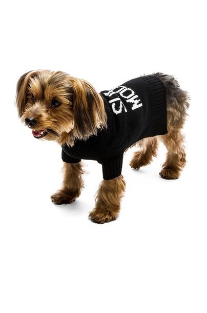 360 Sweater sweater skull dog black