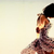 Pashionvictim - Il perfetto luogo d'incontro tra fashion blogger e brand emergenti da cui nasce lo stile di domani.