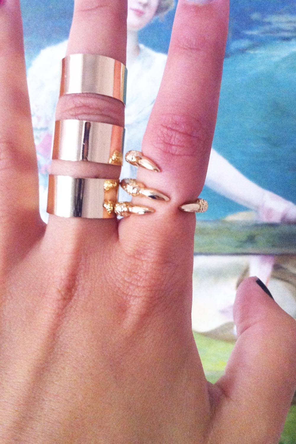 Sabo skirt  claw ring