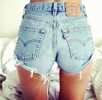 shorts levis 501 summer pls