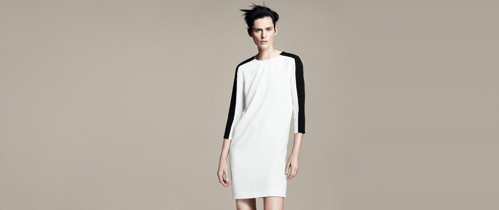 Zara international