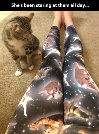 jeans leggings space cats galaxy leggings cat leggings