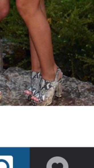 shoes snake print heels chunky heels python peep toe heels