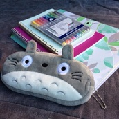 home accessory,pencil case,totoro,kawaii accessory,school supplies,back to school,stationary