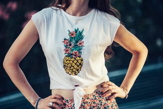 mahayanna blogger top pineapple pineapple print flowers