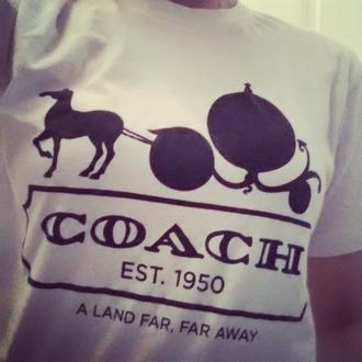 disney couch cinderella shirt