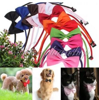home accessory pet dog clothes