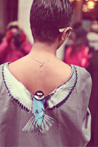 shirt birds