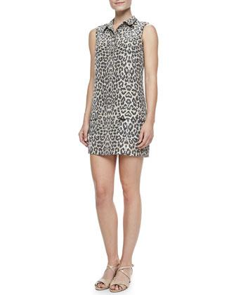 Equipment Lucida Leopard-Print Silk Dress - Neiman Marcus