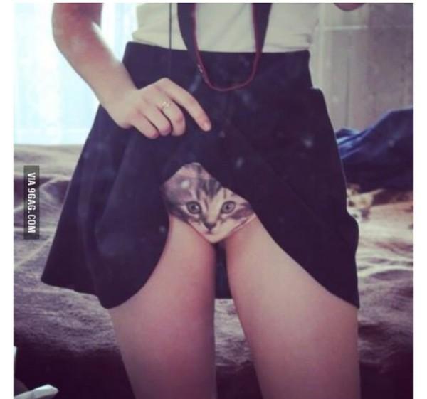 underwear cats