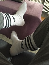 socks,adidas,white,adidas originals