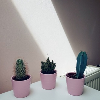 home accessory cute rosy ariana grande grande green tumblr grunge black plants cactus room accessoires plantlife office supplies