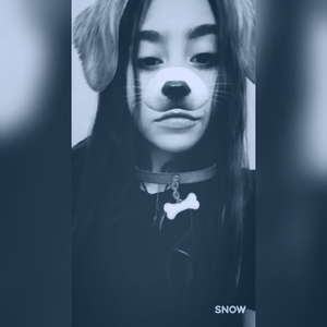 Bambi_B