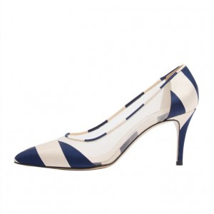 8aec2dc56bf5 Navy and Beige Stripes Stiletto Heels Clear Pointy Toe Chic Pumps