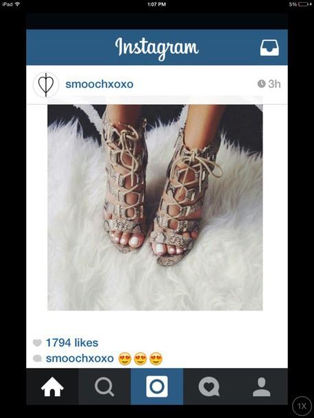 shoes snakeskin heels snake print heels carvela