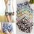 Women Floral Print Elastic High Waist Pants Shorts Mini Trouser Short Pants | eBay