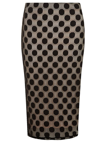 Black and Blush Spot Lace Tube - Skirts  - Clothing  - Dorothy Perkins