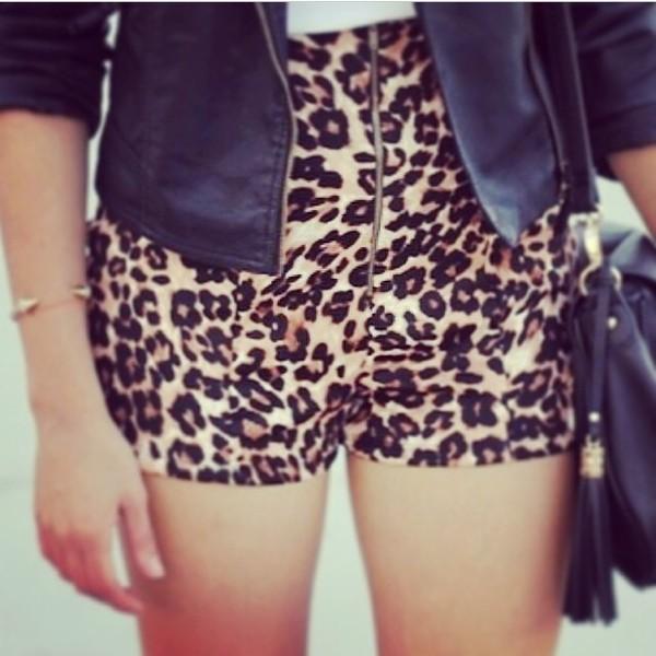 shorts leopard print white blouse