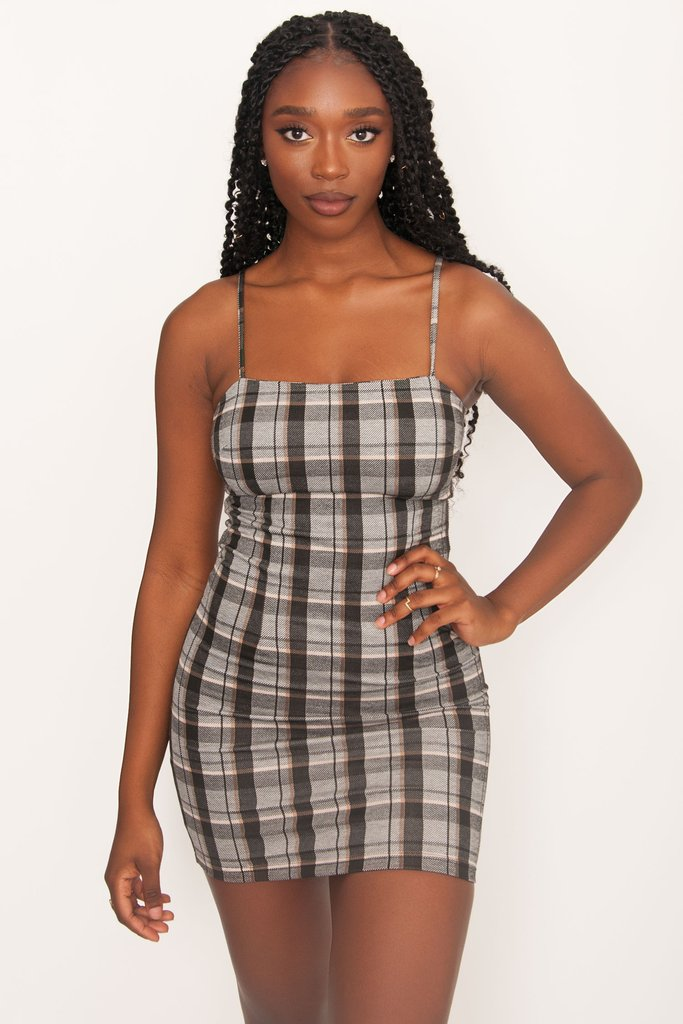 Tiger Mist Take On Dress - Neutral Check