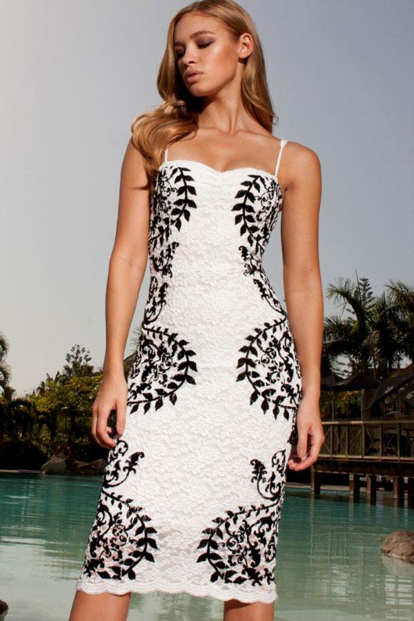Elanor Print Lace Midi Dress