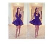 dress,cobalt blue,low cut,v neck,plunge v neck,mesh inserts,black line,black border,sinched waist,skater dress