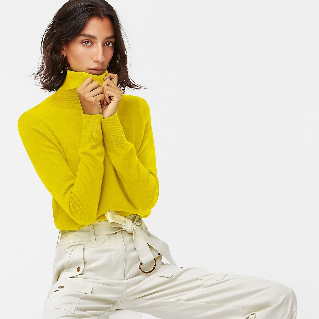 Everyday Cashmere Turtleneck Sweater