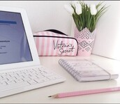 victoria's secret,pencil case,girly,desk