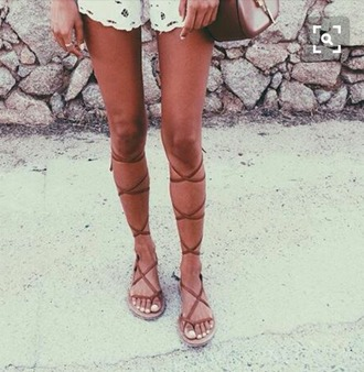 shoes knee high gladiator sandals gladiators lace up gladiators lace up gladiator sandals sandals lace lace up tan browlove cute pretty hot summer boho bohemian hippie hip flats flat lace up lace up flats gladiator flats