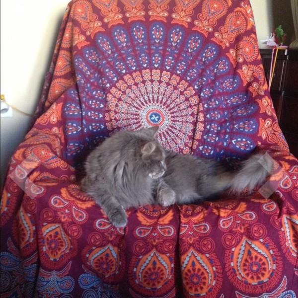 Spread Love Mandala Bed Canopy Hippie Mandala Throws And
