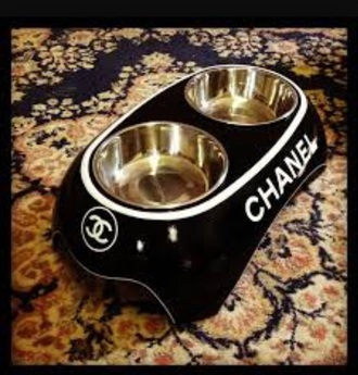 home accessory animal clothing chanel