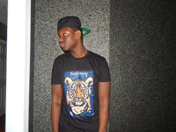 t-shirt shirt tiger snapback earrings
