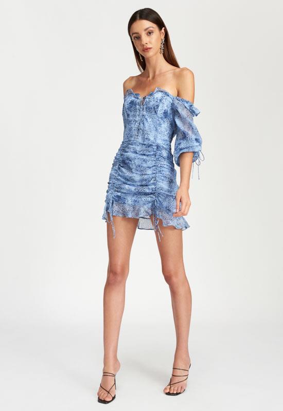 PRE-ORDER: Feng Shui Mini Dress - BLUE ANIMAL - Lioness