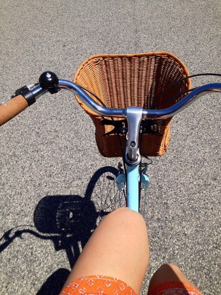 basket dress skirt bicycle
