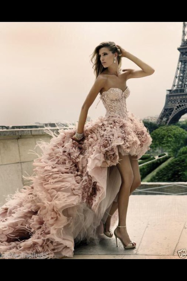 dress high low blush nude paris feathers avant garde corset top bustier flowers lace dress long train dress eiffel tower