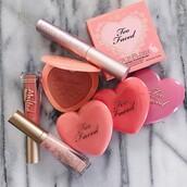 make-up,tumblr,lip gloss,lipstick,cheek blush,too faced,mascara,cosmetics