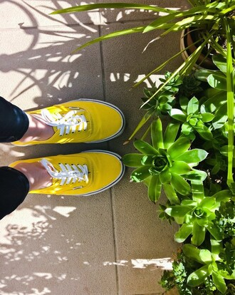 shoes vans yellow chaussures white baskets basket tennis