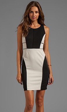 Greylin  - Resort 2014 Collection - Free Shipping and Returns!