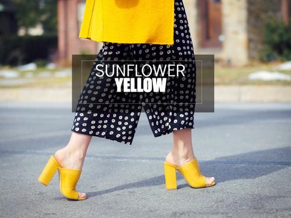 bittersweet colours coat pants bag shoes sunglasses