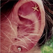 jewels,sea,seastar,stars,gold,earrings,earings,piercing,summer,starfish,helix piercing,ear piercings