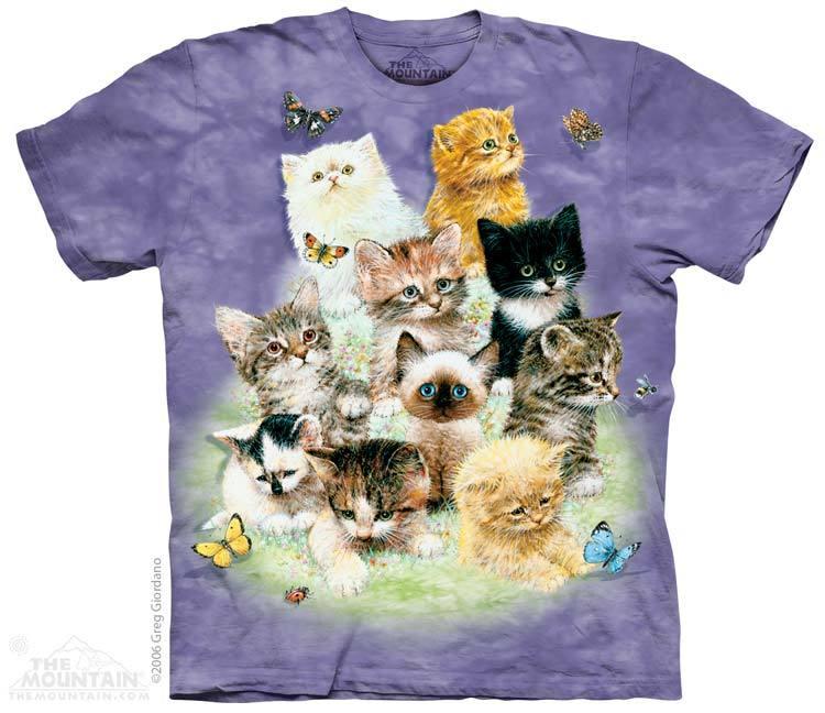 10 kittens t