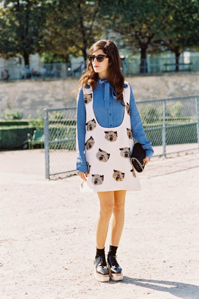 vanessa jackman blogger cats blue shirt blouse top