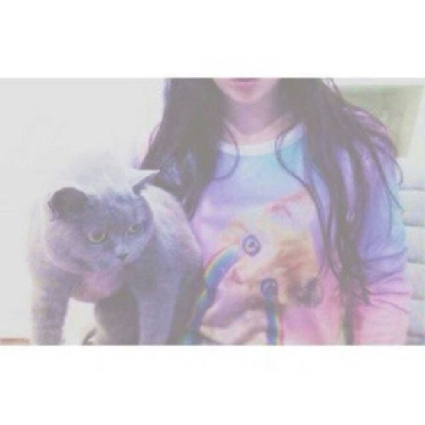 top t-shirt long sleeves pink purple lilac cats cats kitties rainbow pastel grunge pale soft soft grunge pale grunge pastel grunge blue aesthetic