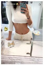 pants,kendall jenner,snapchat,crop tops,kardashians,all white everything,phone cover