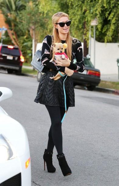 f8dc0a2571cbf skirt shoes top bag sunglasses fall outfits paris hilton dog