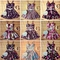 Flirty floral bustier dress | ebay