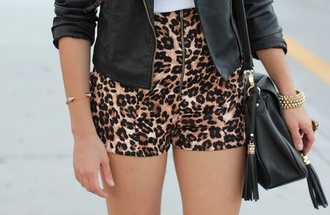 shorts printed shorts bag jewels high waisted shorts leopard print leopard leather short girly pretty perfect combination vintage clothes