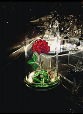 home accessory,beauty and the beast,roses